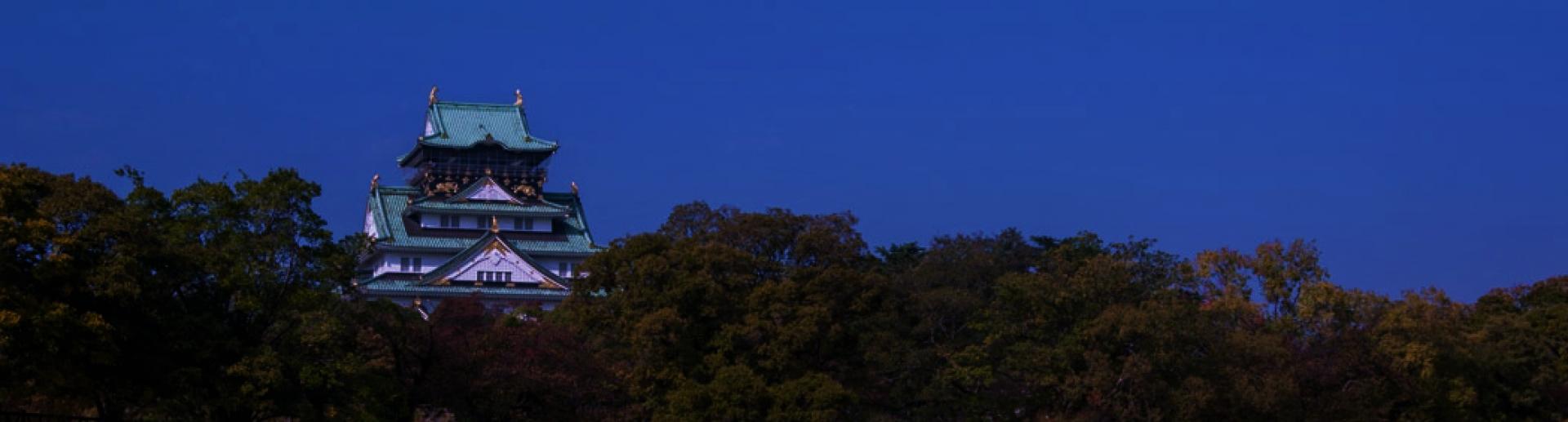 大阪城トライアスロン大会エントリー